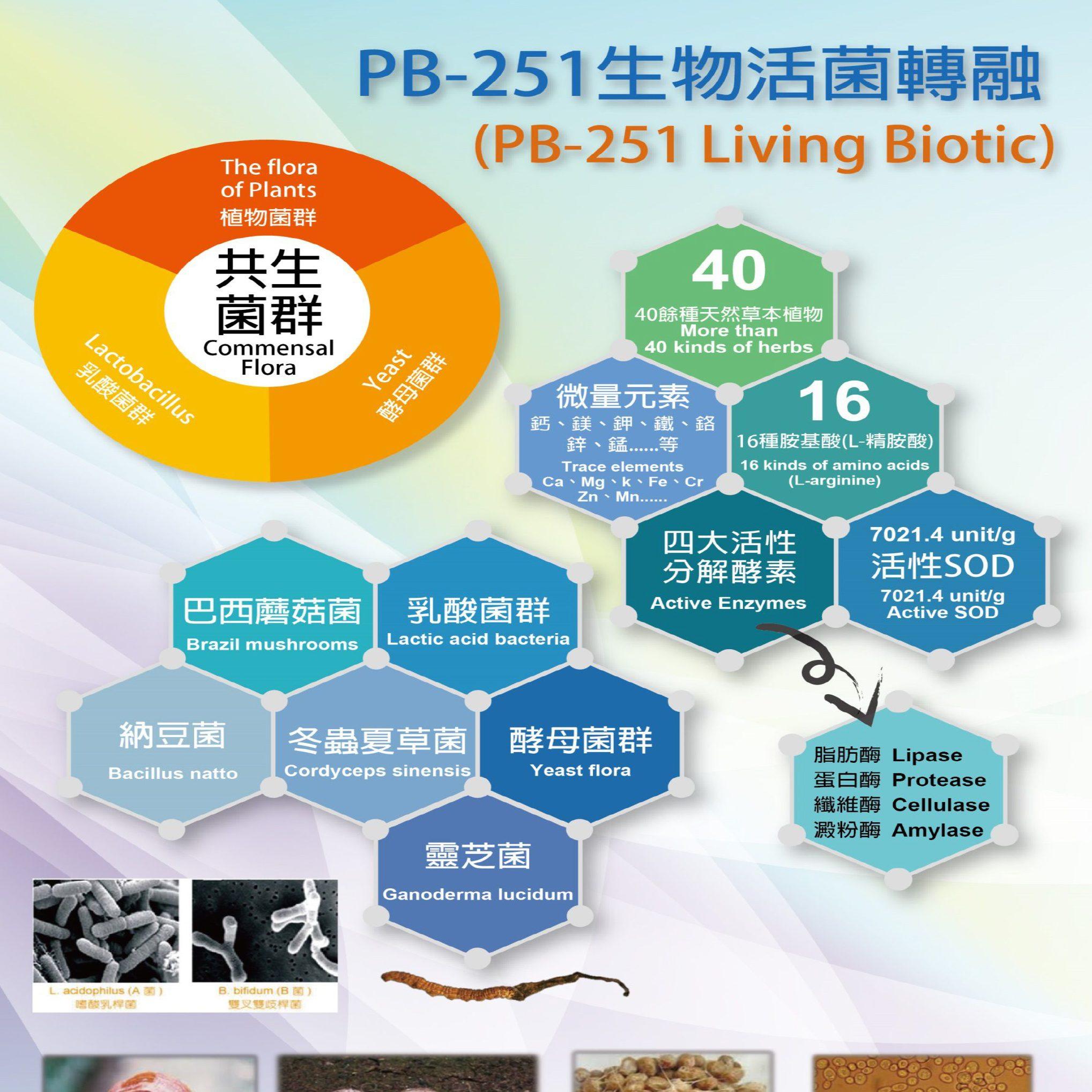 超級益生菌-p5